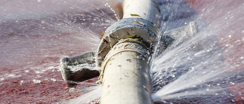 Desentupindo vaso sanitário com água sanitária.